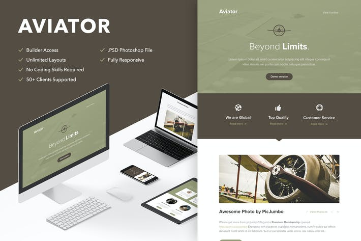 Thumbnail for Aviator - Responsive Email + Themebuilder Access
