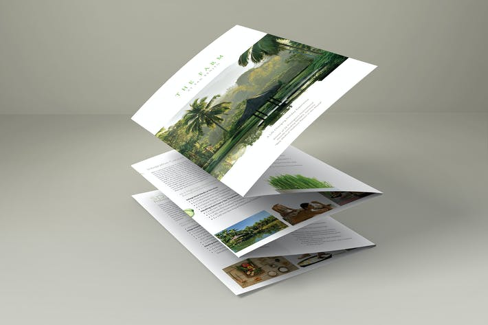 Thumbnail for Accordion Style Brochure MockUp