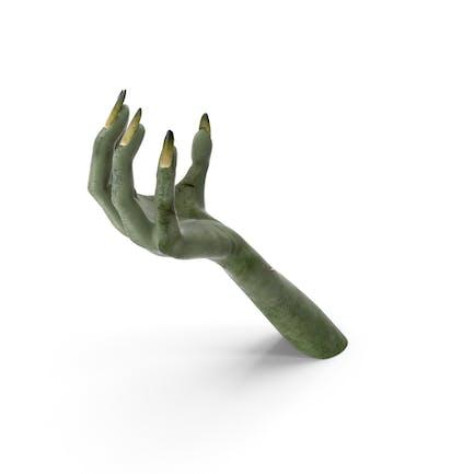 Creature Hand Upwards Object Hold Pose
