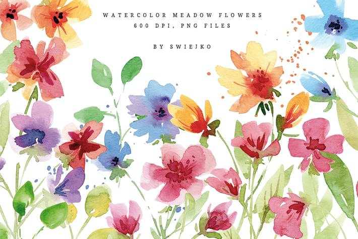 Thumbnail for Watercolor Meadow Flowers