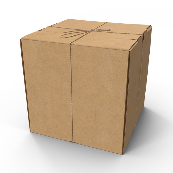 Cover Image for Square Cardboard Box with Twine