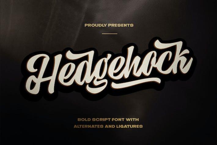 Hedgehock - Bold Script Logo Font