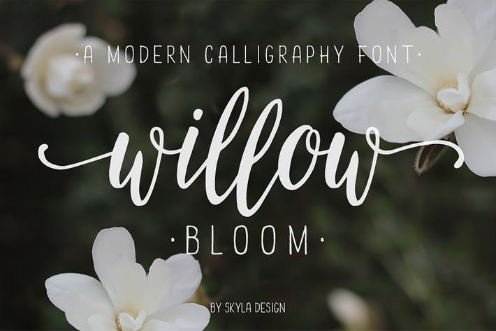 Thumbnail for Willow Bloom modern calligraphy font