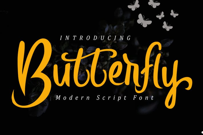 Cover Image For Butterfly Modern Script