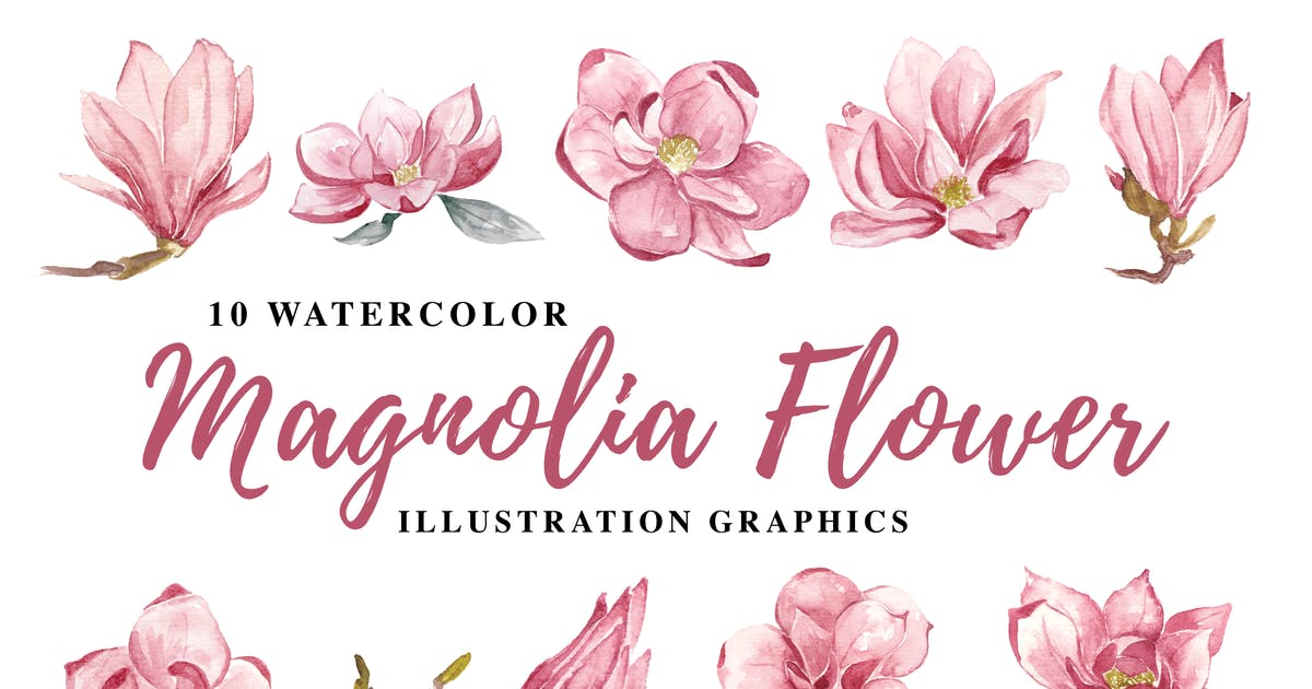 Download 10 Watercolor Magnolia Flower Illustration Graphic by IanMikraz