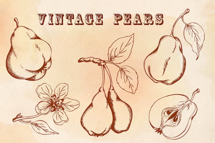 Thumbnail for Vintage Pears
