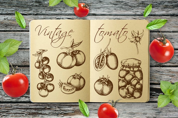 Thumbnail for Vintage Tomatoes