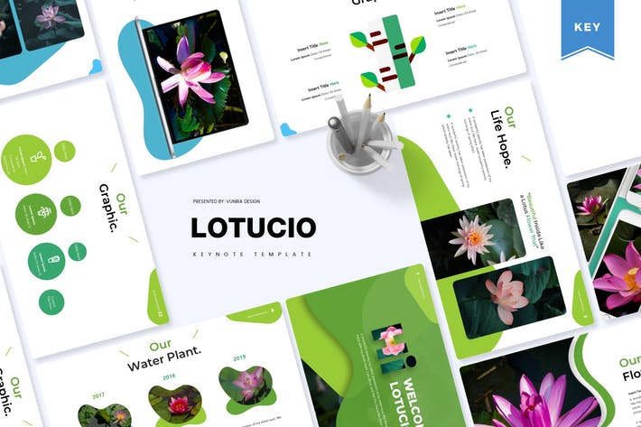 Thumbnail for Lotucio | Keynote Template