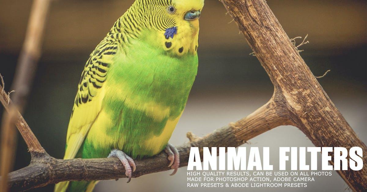 Download 17 Animal Photography Lightroom Presets by creativetacos