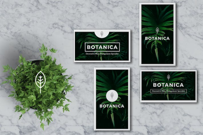 Thumbnail for BOTANICA Business Card Template