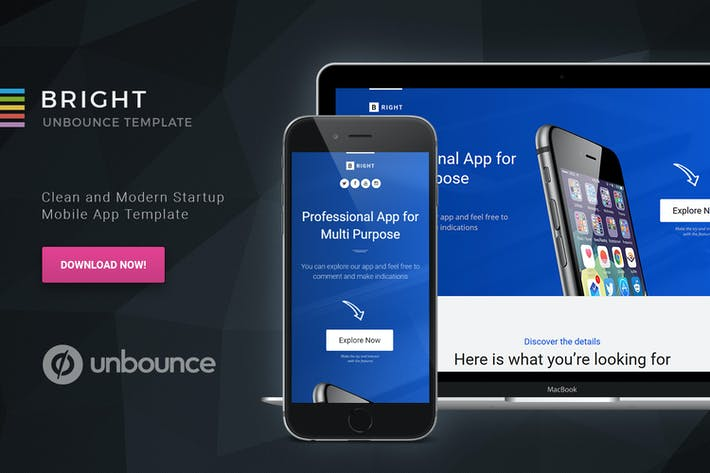 Thumbnail for Bright - Page de destination Unbounce Startup