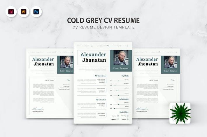 Thumbnail for Cold Grey CV Resume