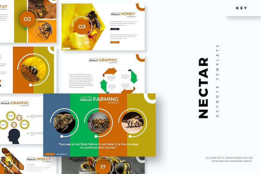 Nectar - Keynote Template