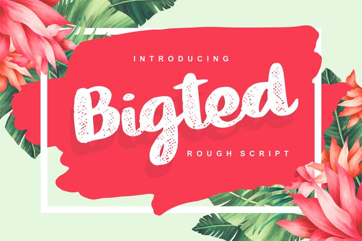 Thumbnail for Bigted | Rough Script Font