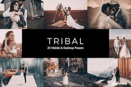 20 Tribal Lightroom Presets & LUTs