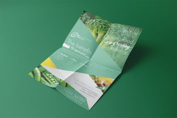 Thumbnail for Organic Food/ Flyer Template
