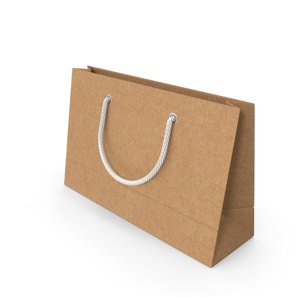Craft Packaging Bag with White Handles