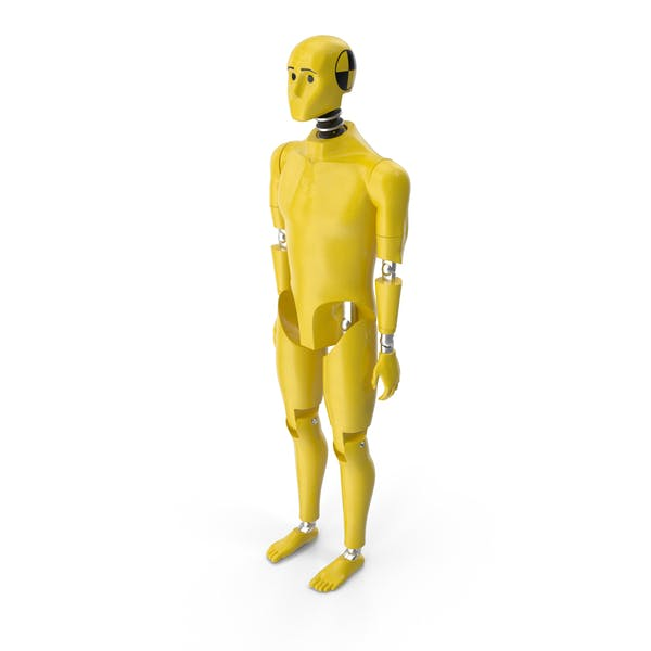 Crash Test Dummy Standing Pose