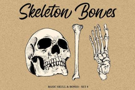 Skeleton Bones set 4