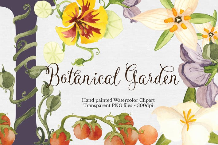 Thumbnail for Botanical Garden