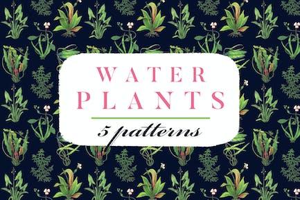 Water Plants Patterns