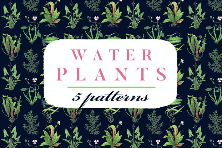 Thumbnail for Water Plants Patterns