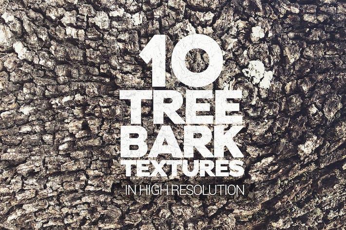 Thumbnail for Baumrinde Texturen 10 Stück