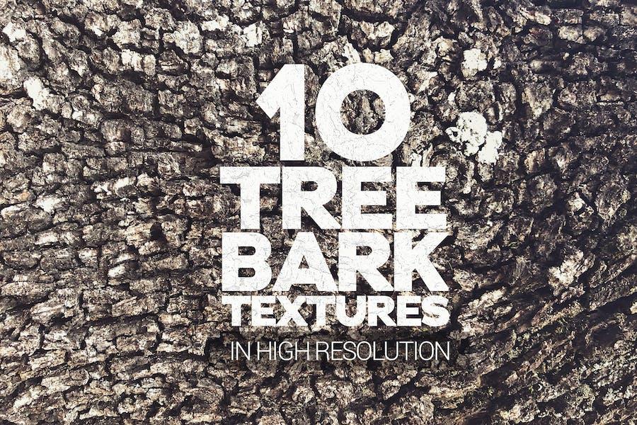 Tree Bark Textures x10