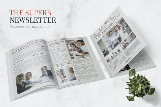 Superb Business Newsletter