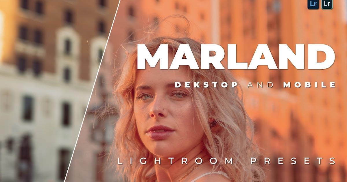 Download Marland Desktop and Mobile Lightroom Preset by Bangset