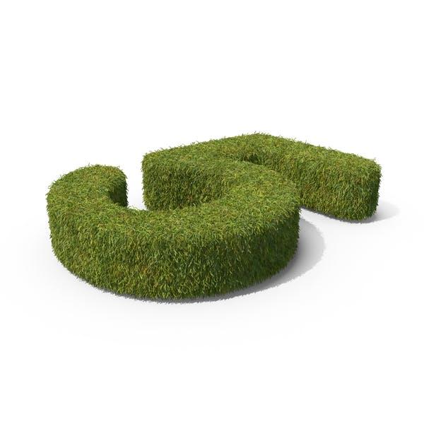 Grass Número 05 Tierra
