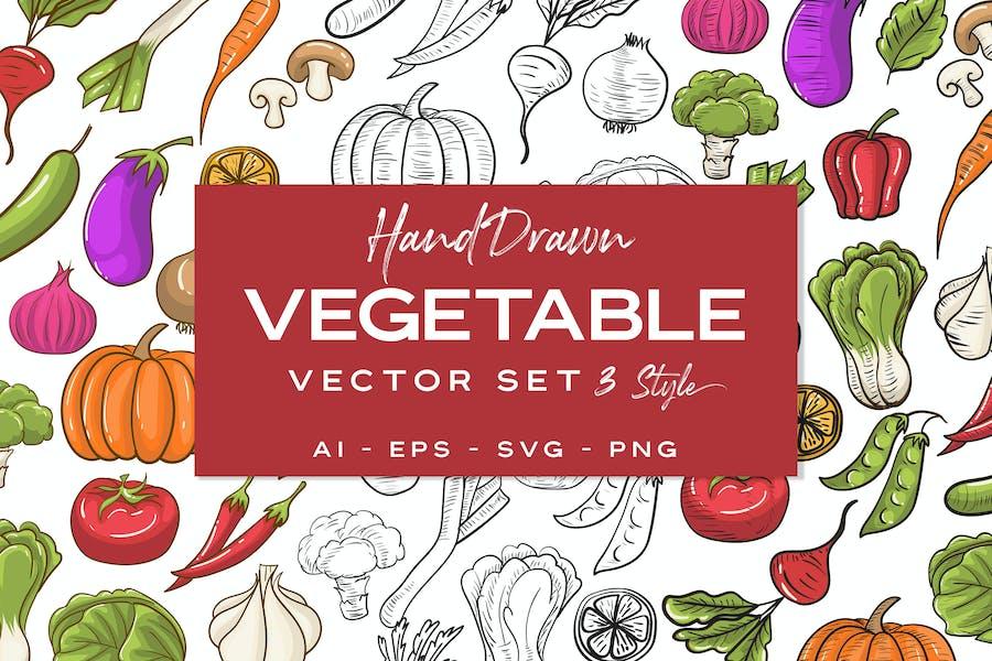 Vegetable Handdrawn