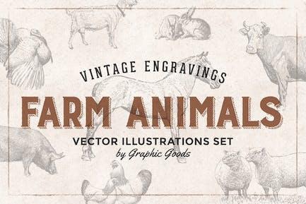 illustrations de gravure animaux de la ferme