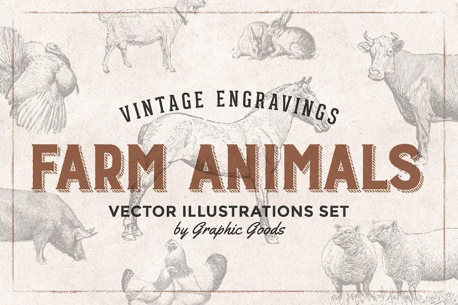 Farm Animals Engraving Illustrations