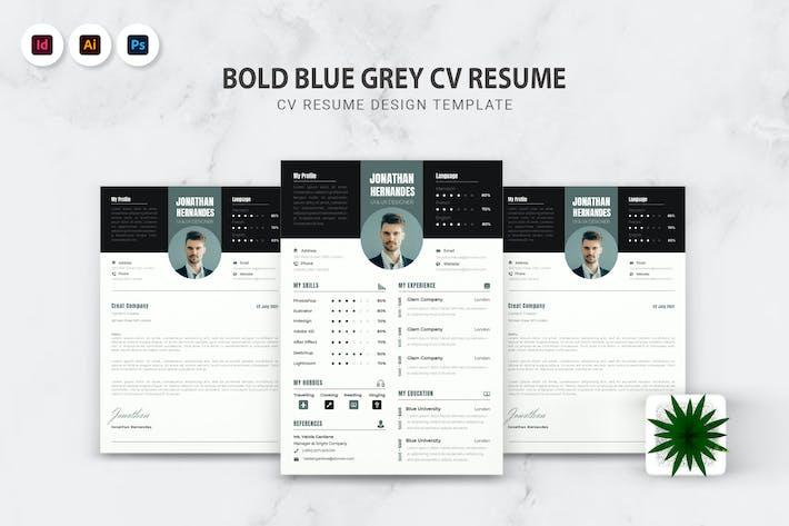 Thumbnail for Bold Blue Grey CV Resume
