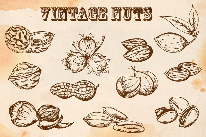 Thumbnail for Set of Vintage Vector Nuts