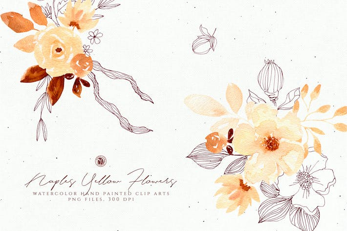 Thumbnail for Naples Yellow Flowers