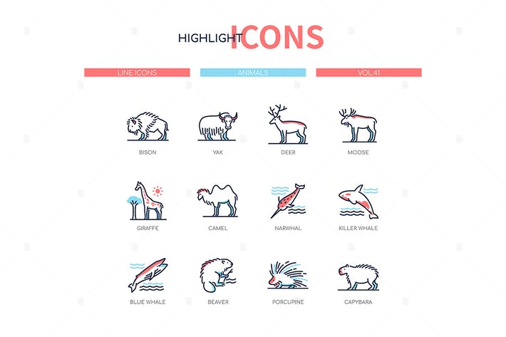 Thumbnail for Animals collection - line design style icons