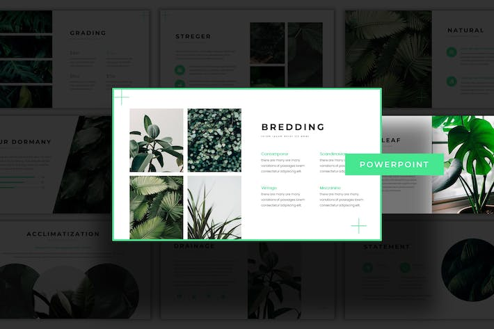 Thumbnail for Greenbean - Powerpoint Template