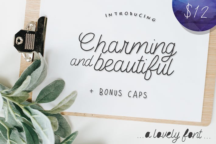 Thumbnail for Charming and Beautiful Font
