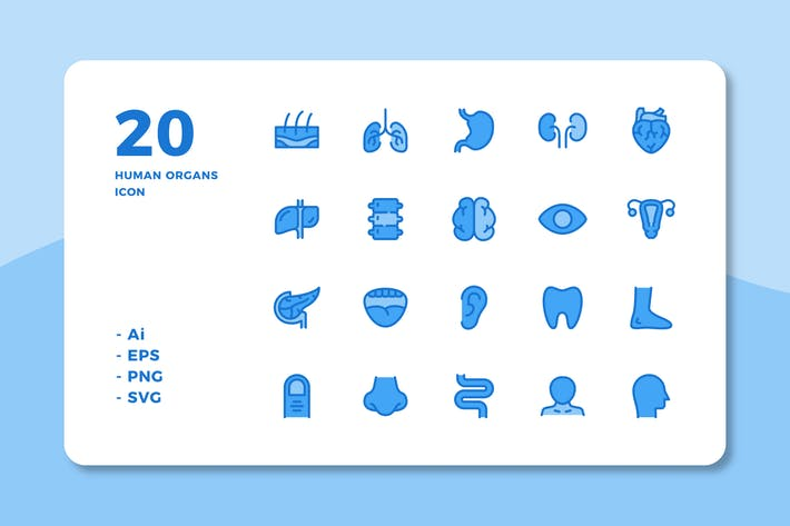 Thumbnail for 20 Human Organs Icons (Lineal Color)