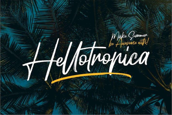 Thumbnail for Hellotropica | Fuente cepillada a mano