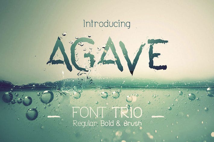 Thumbnail for Agave Font Trio