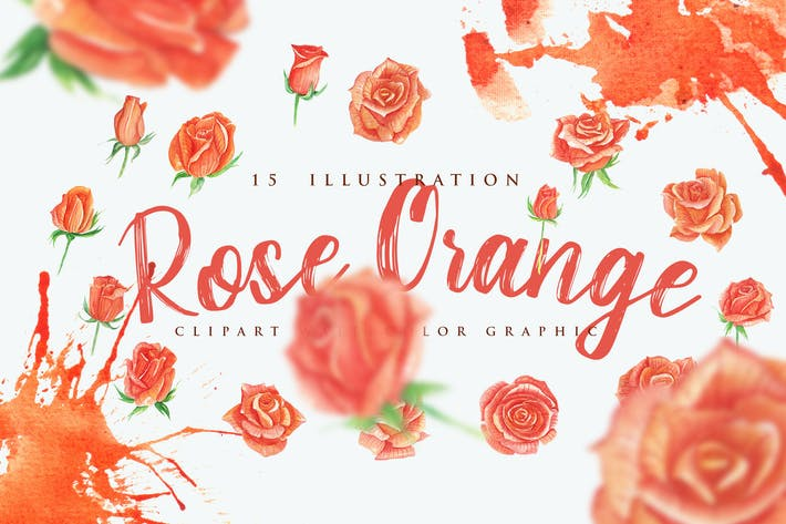 Thumbnail for 15 Watercolor Rose Orange Flower Illustration