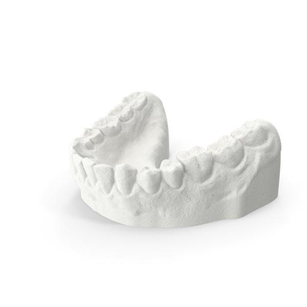 Dentaduras inferiores de arcilla molde