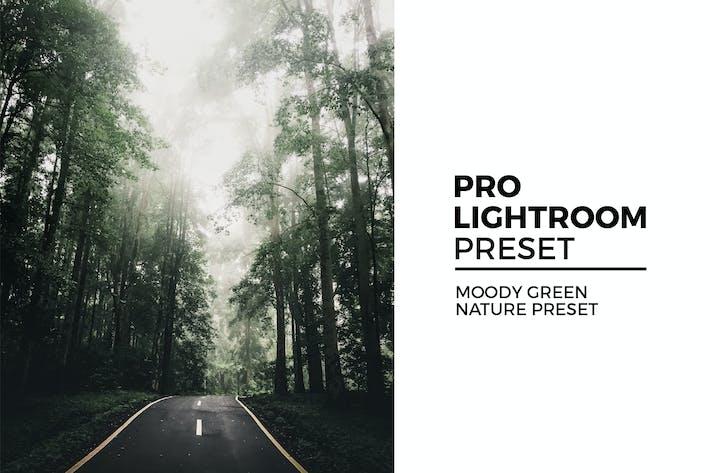 Thumbnail for Moody Green Nature Preset