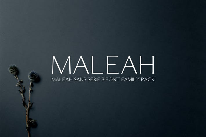 Thumbnail for Maleah Sans Serif Font Family Pack