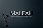 Maleah Sans Serif Font Family Pack