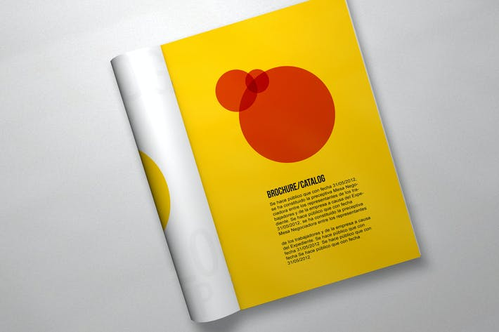 Thumbnail for Brochure Mockup