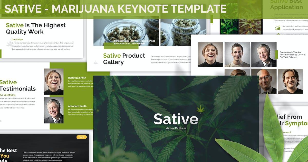 Download Sative - Marijuana Keynote Template by SlideFactory